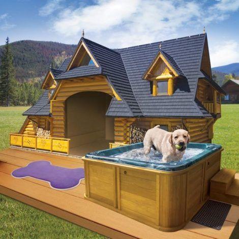 casinhas de cachorro 1 470x470 - CASINHAS de Cachorro lindas e confortáveis