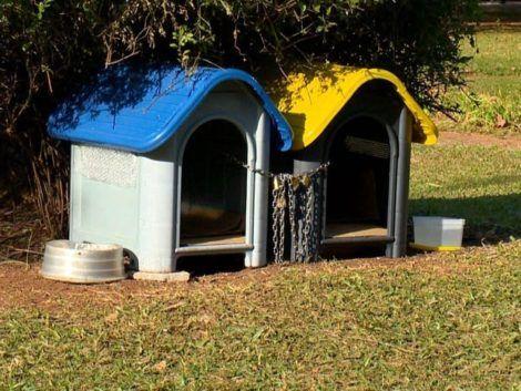 casinhas de cachorro 10 470x353 - CASINHAS de Cachorro lindas e confortáveis