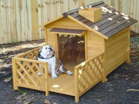 casinhas de cachorro 2 470x353 - CASINHAS de Cachorro lindas e confortáveis
