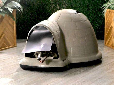casinhas de cachorro 4 470x353 - CASINHAS de Cachorro lindas e confortáveis
