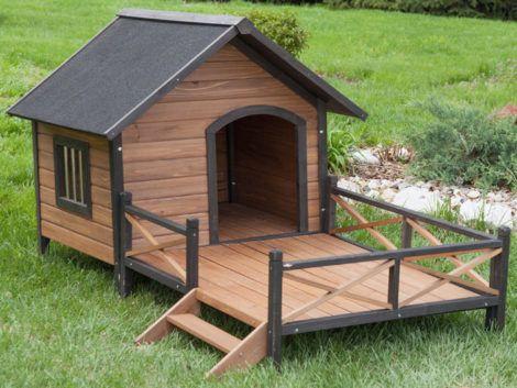 casinhas de cachorro 9 470x353 - CASINHAS de Cachorro lindas e confortáveis