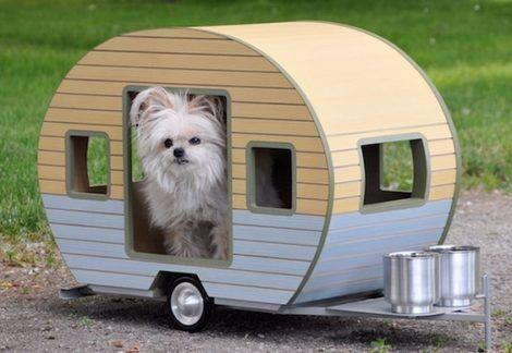 casinhas de cachorro11 470x324 - CASINHAS de Cachorro lindas e confortáveis