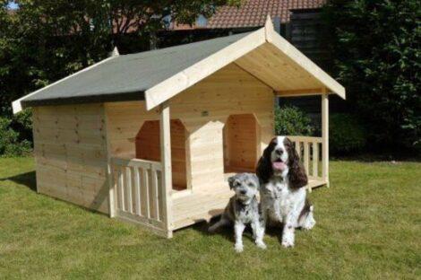 imagem 17 470x312 - CASINHAS de Cachorro lindas e confortáveis