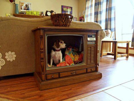 imagem 25 470x353 - CASINHAS de Cachorro lindas e confortáveis
