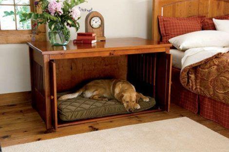 imagem 26 470x312 - CASINHAS de Cachorro lindas e confortáveis