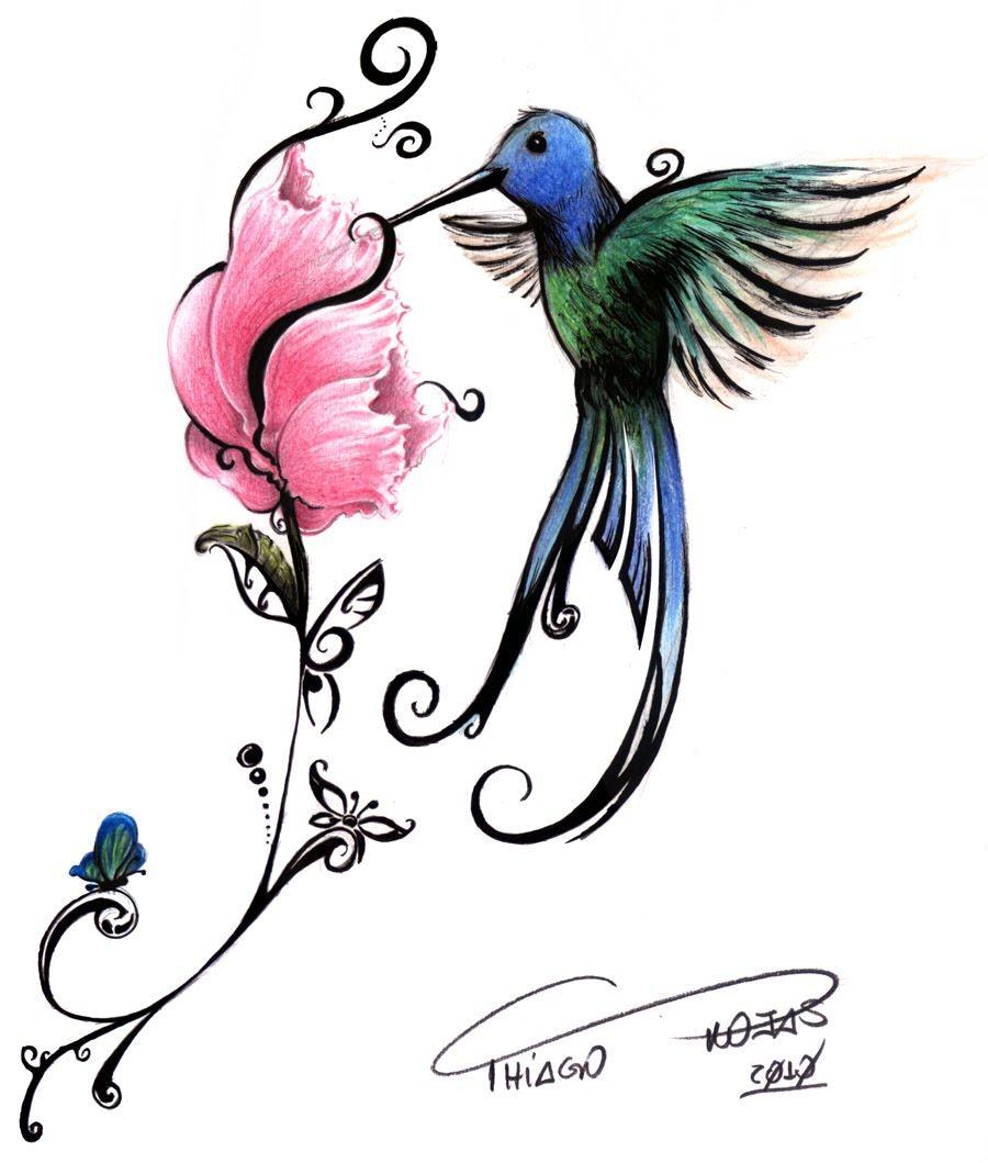 Desenhos De Beija Flor, Para Pintar