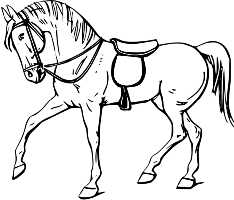 desenho de cavalo para colorir 3 470x402 - Desenhos de CAVALO PARA COLORIR para crianças