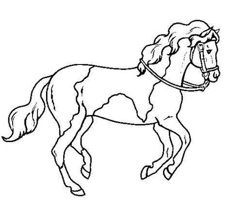 desenho de cavalo para colorir 7 470x437 - Desenhos de CAVALO PARA COLORIR para crianças