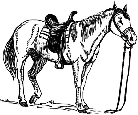 imagem 11 470x394 - Desenhos de CAVALO PARA COLORIR para crianças