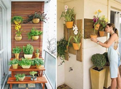 dicas de horta na sacada de apartamento 420x309 - HORTA VERTICAL PARA SACADA do apartamento, veja