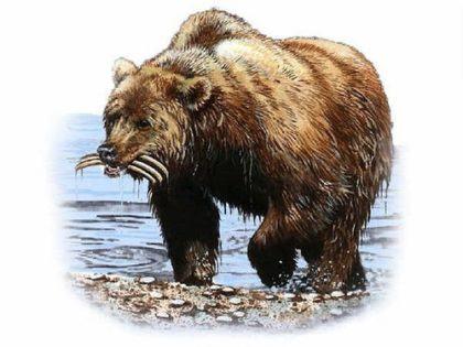 animais da profecia de Daniel 420x315 - Os animais da Profecia de Daniel e o seu significado